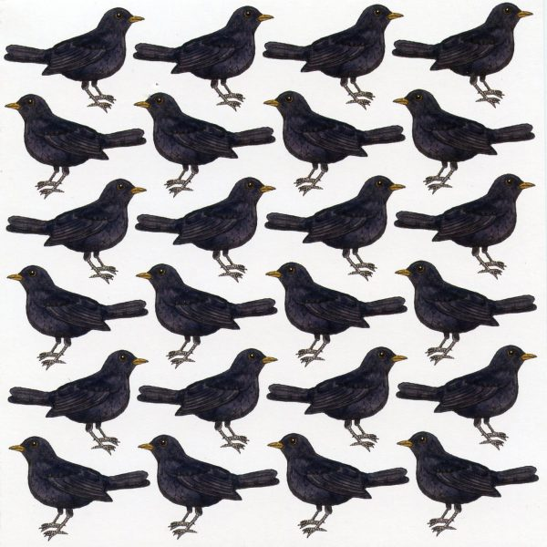 Garden bird notecards