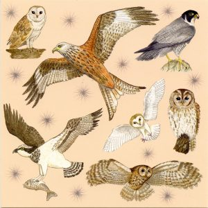 Birds of Prey greetings card