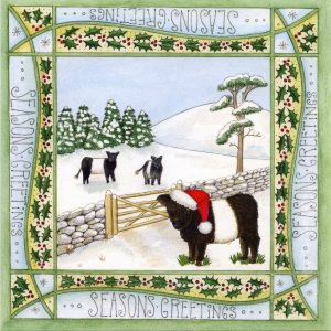 beltie cow christmas card