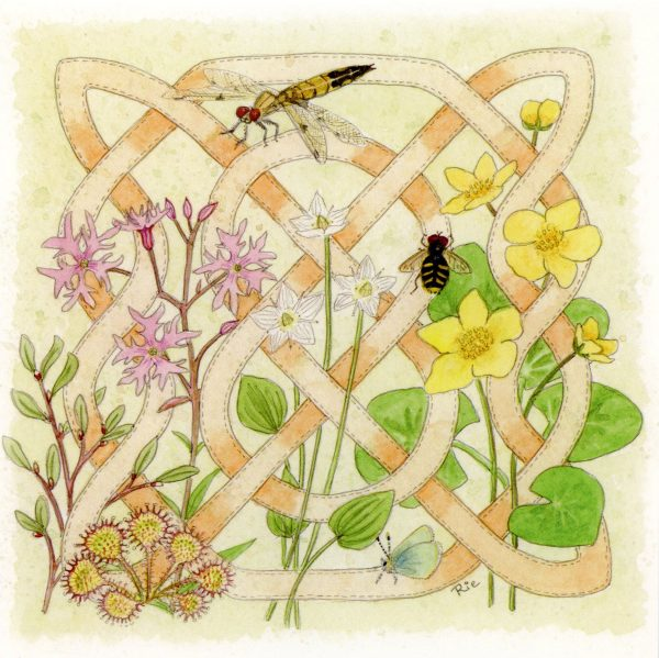 Celtic Flora Bog Greetings Card
