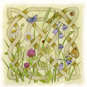 Celtic Flora Meadow Greetings Card