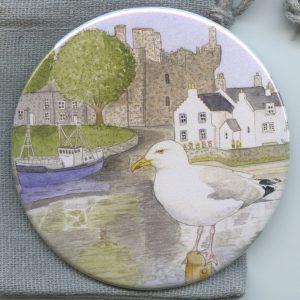 Herring Gull Kirkcudbright Mirror