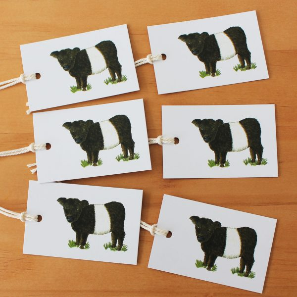 Belted Galloway Gift tags