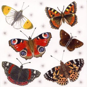 British butterflies greetings card