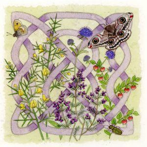 Celtic Flora Heath Greetings Card