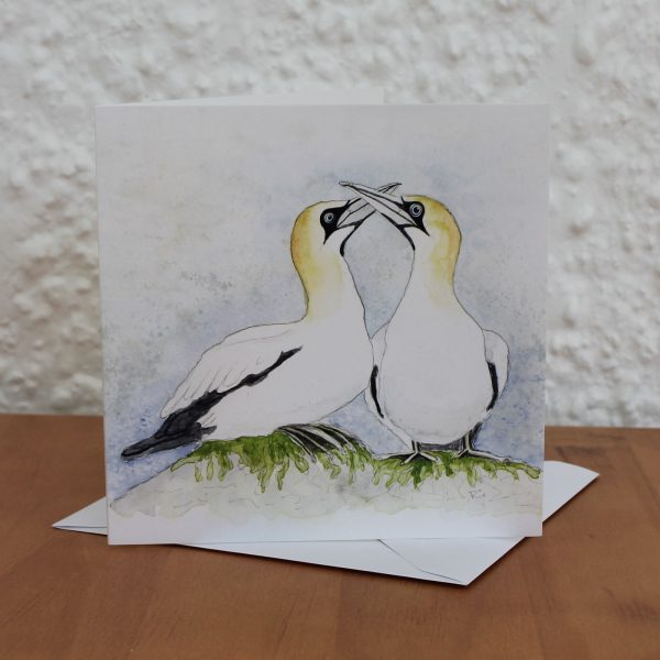 gannet greetings card