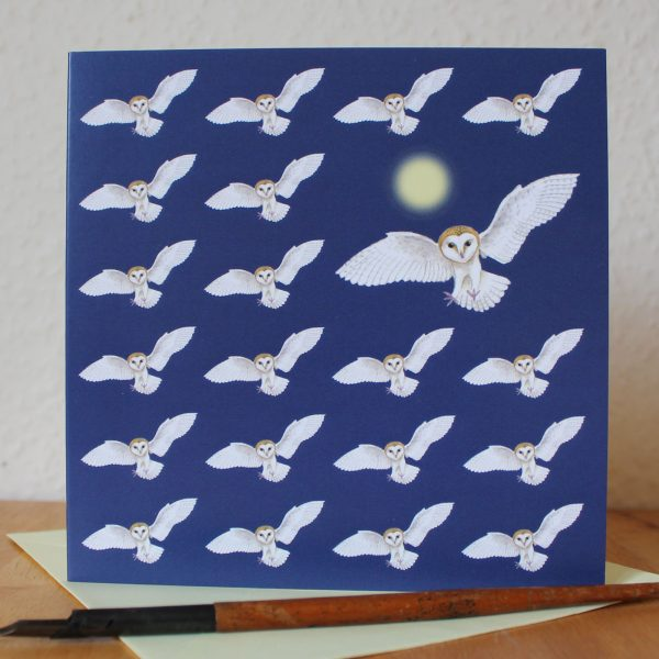 Barn Owl Greetings Card