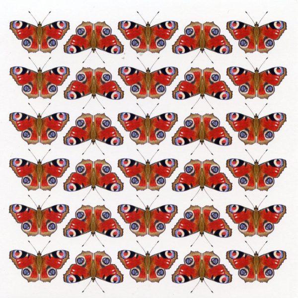 Butterfly notecard