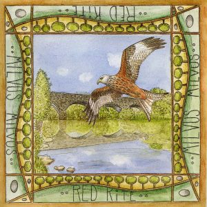 red kite trail greetings card