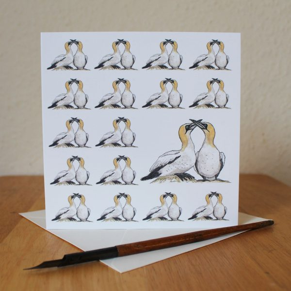 Gannets Blank Square Greetings Card