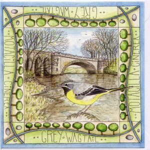 grey wagtail tongland bridge greetings card