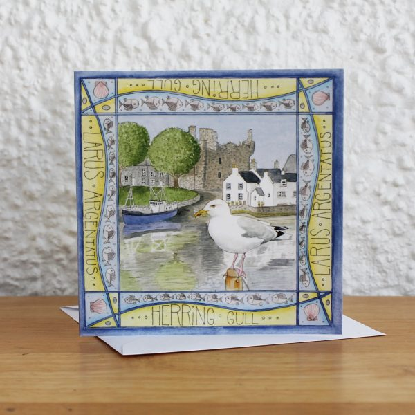 Herring gull kirkcudbright greetings card