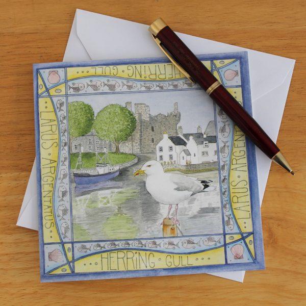 Herring gull kirkcudbright greetings card