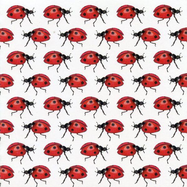 Ladybird notecard