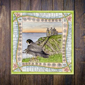 Peregrine Dunskey Castle Greetings Card