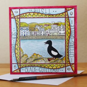 Tystie portpatrick greetings card