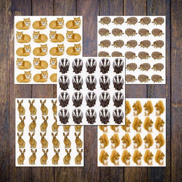 wild animal notecards