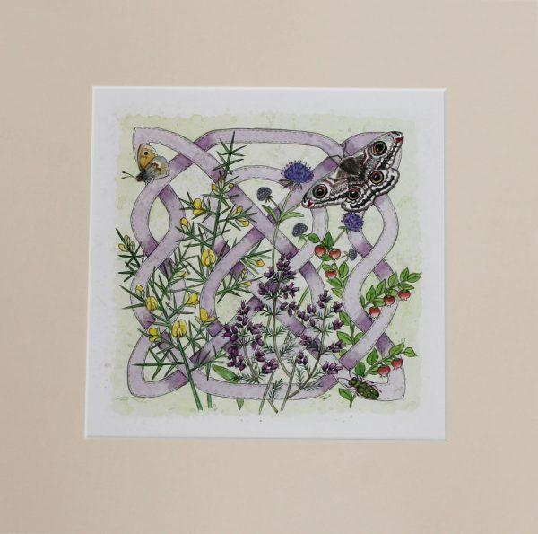 celtic flora heath mounted print