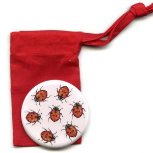 ladybird pocket mirror