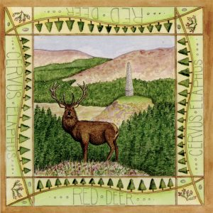 Galloway Red Deer Range greetings card
