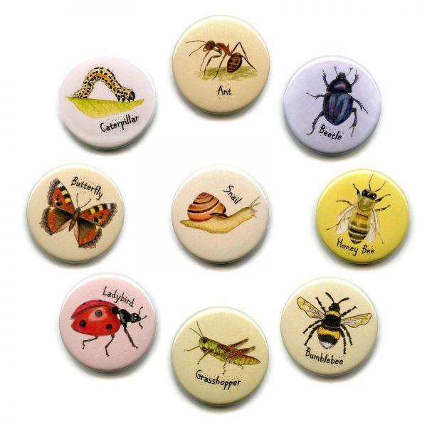 set invertebrates fridge magnets
