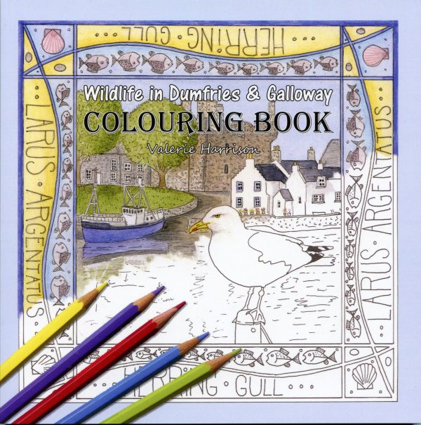 Dumfries and Galloway Wildlife Colouring Book