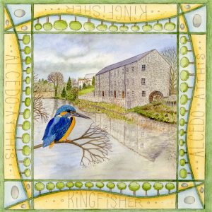 Kingfisher, Mill on the Fleet Blank Square Greetings Card