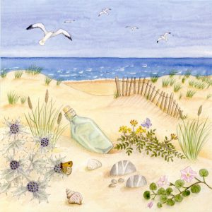 Scottish Coast Blank Square Greetings Card