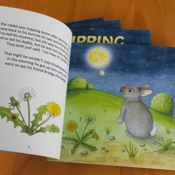 Dripping Moon Childrens Book