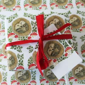 Christmas-hedgehog-wrap