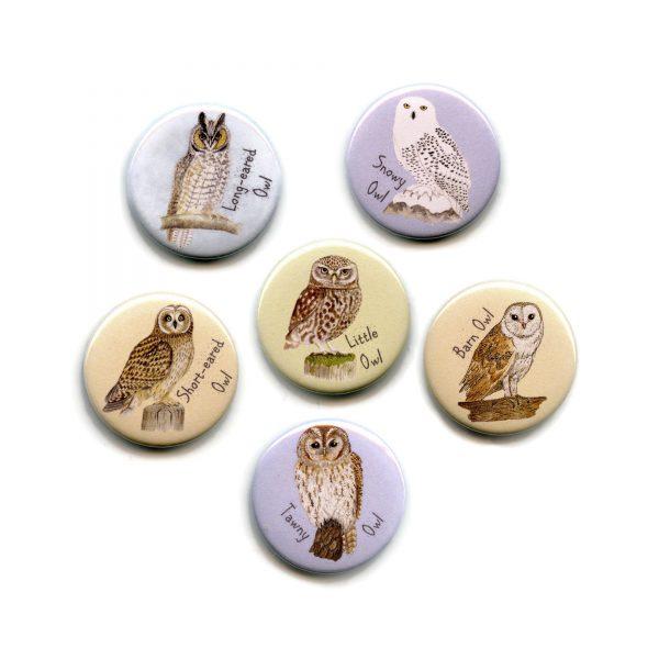 Set-of-owl-magnets