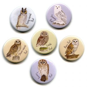 Set-of-owl-magnets