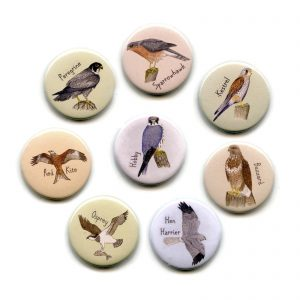bird-of-prey-magnets