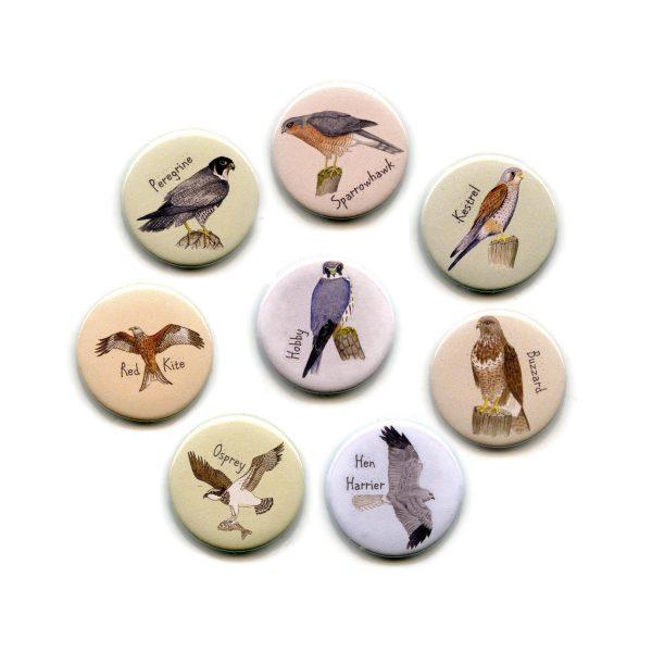bird-of-prey-magnets