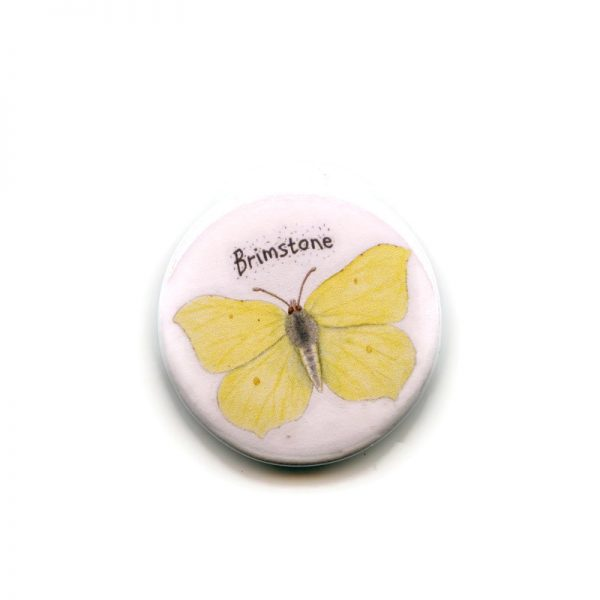 brimstone butterfly magnet