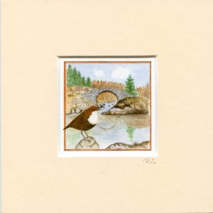 Dipper Roman Bridge Galloway Forest Park Mounted Mini Giclée Print