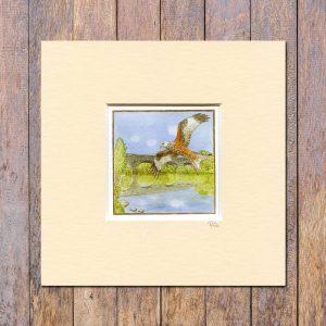 Red-Kite-Trail-Mounted-Miniprint