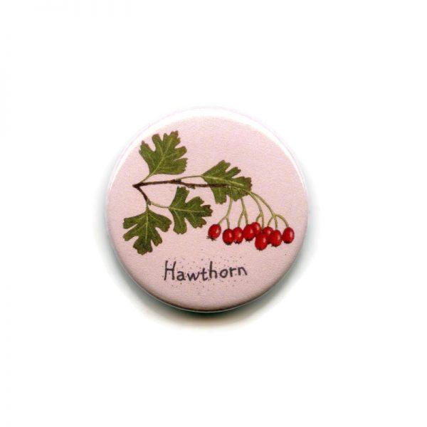 hawthorn magnet