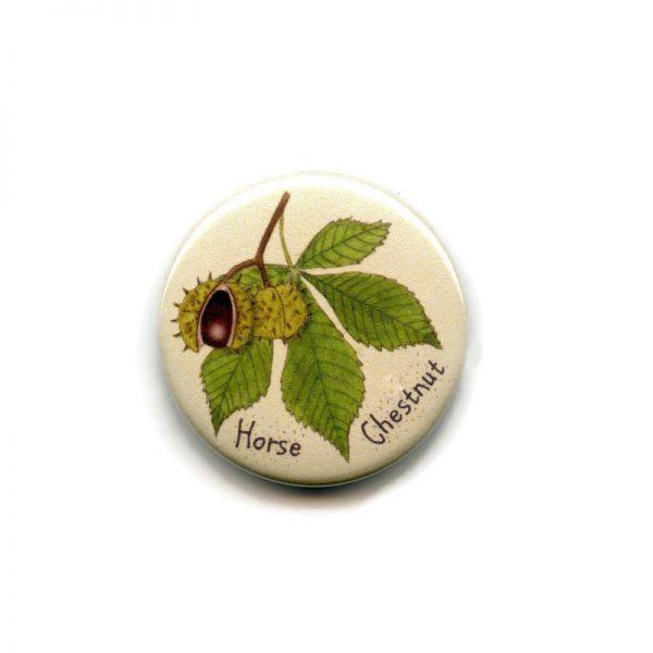 horse chestnut magnet