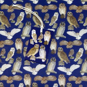 British Owls Gift Wrap and Tags