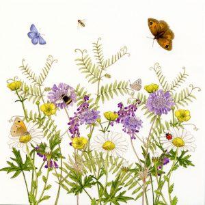 wildflower meadow greetings card