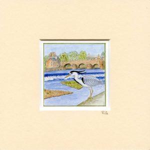 heron-dumfries-mounted-miniprint