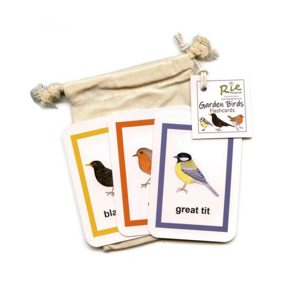 garden birds flash cards