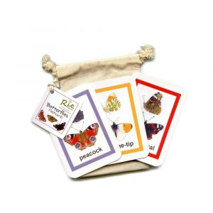 Butterfly-Flash-cards
