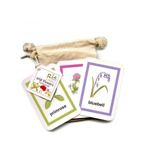 Wild-Flower-flashcards
